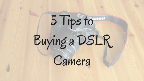 Mechanicsburg PA Family Pictures Guide to buying a DSLR